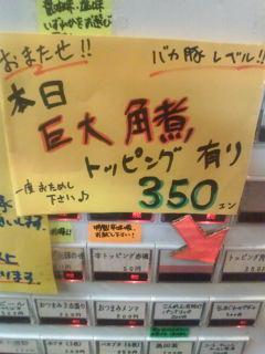 D1000689.jpg